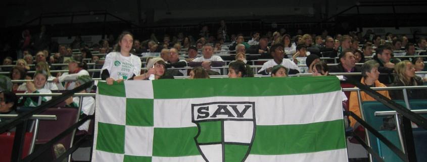 Fahne SAV